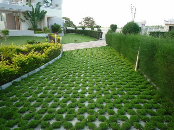 grass paver for courtyard (4)