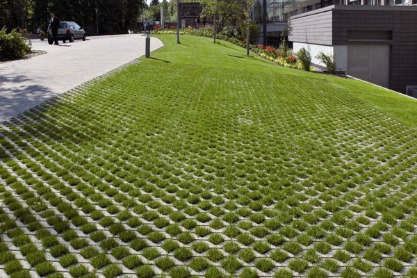 grass paver for courtyard (7)