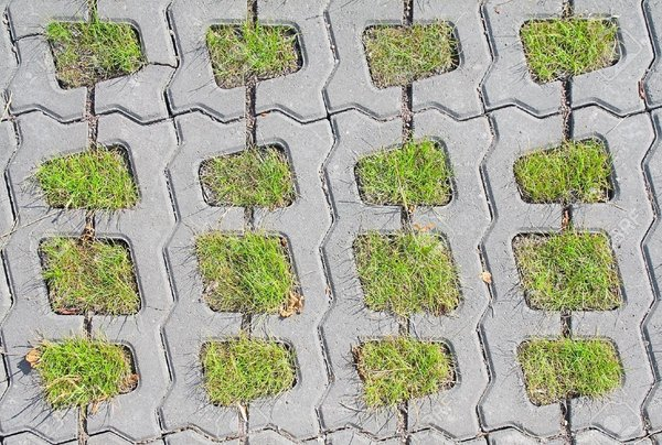 grass paver for courtyard (8)