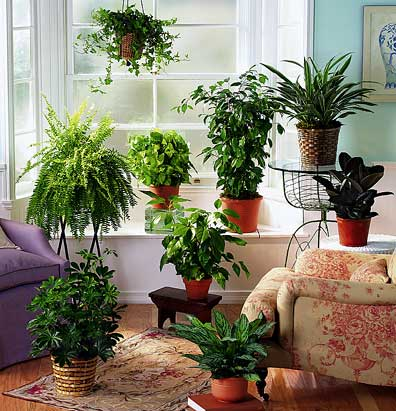 how-to-cool-your-home (1)