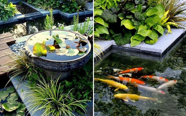 Creating Fish Pond In Garden House : Luxury And Elegant Home Design In The World