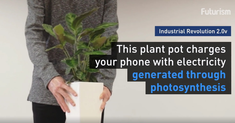 photosynthesis-phone-charger (2)