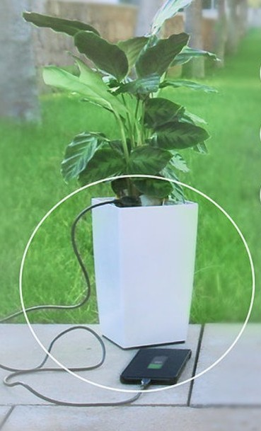 photosynthesis-phone-charger (7)