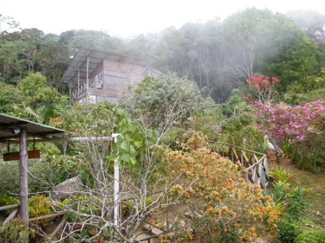 stilts house cabin style (2)