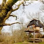 บ้านสวนขนาดเล็ก ยกพื้นสูง ภายในโชว์โครงสร้างไม้ ดูอบอุ่น