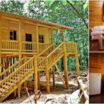 บ้านไม้ยกพื้นสูง พร้อมบันไดสวยงาม ดีไซน์เรียบง่ายแต่อบอุ่น สัมผัสบรรยากาศการใช้ชีวิตติดธรรมชาติ