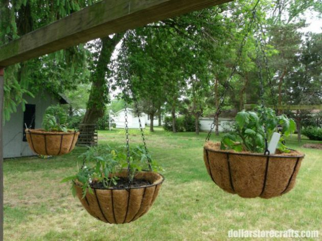 19-ingenious-garden-decorations-that-will-impress-you (19)