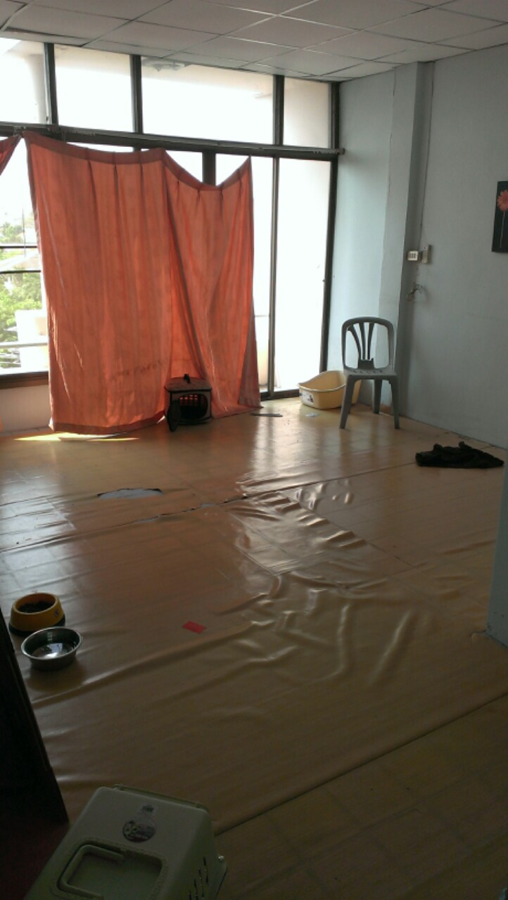2 rooms into 1 room review (5)