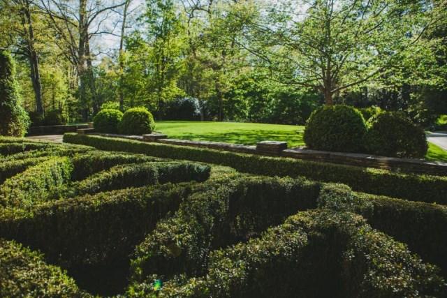 25 ideas for the garden with shrubs (1)