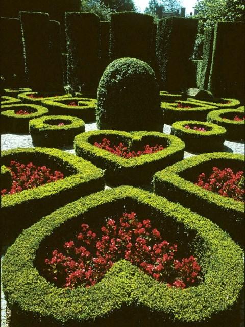 25 ideas for the garden with shrubs (10)