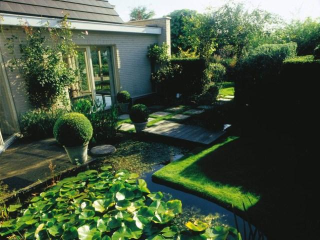 25 ideas for the garden with shrubs (14)