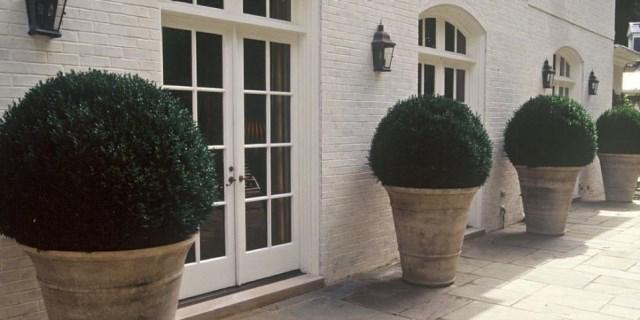 25 ideas for the garden with shrubs (21)