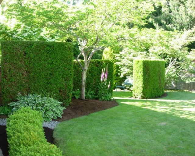 25 ideas for the garden with shrubs (22)