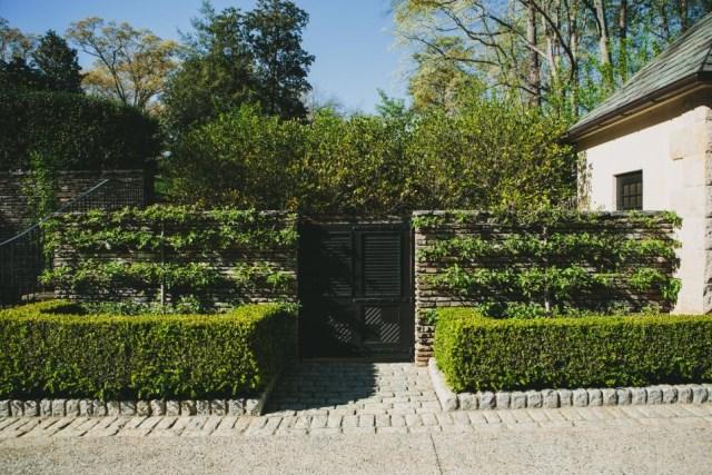 25 ideas for the garden with shrubs (25)