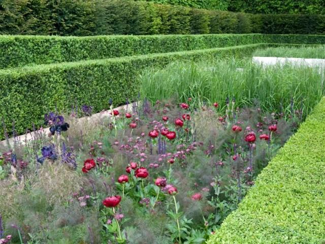 25 ideas for the garden with shrubs (3)