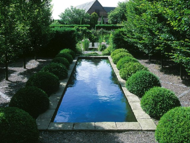 25 ideas for the garden with shrubs (6)