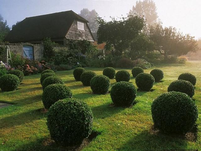 25 ideas for the garden with shrubs (7)