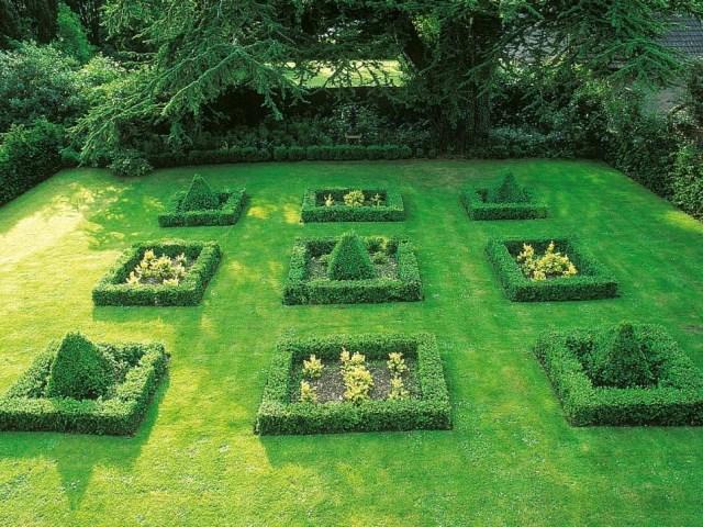 25 ideas for the garden with shrubs (9)