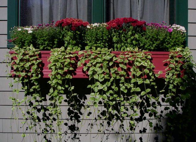 28 flowers balcony decoration ideas (16)