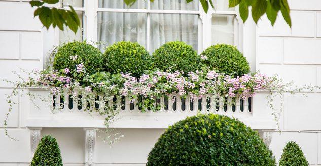 28 flowers balcony decoration ideas (19)