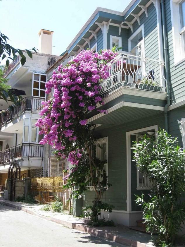 28 flowers balcony decoration ideas (2)