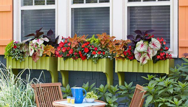 28 flowers balcony decoration ideas (20)