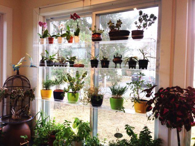 28 flowers balcony decoration ideas (23)