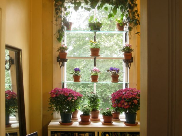 28 flowers balcony decoration ideas (24)