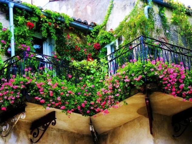 28 flowers balcony decoration ideas (7)