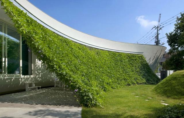 29 great ideas for backyard garden (10)