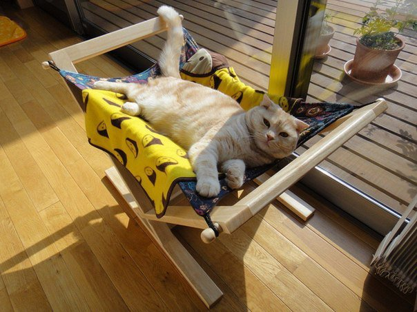 30-ideas-to-make-cool-cozy-bed-for-cat (2)