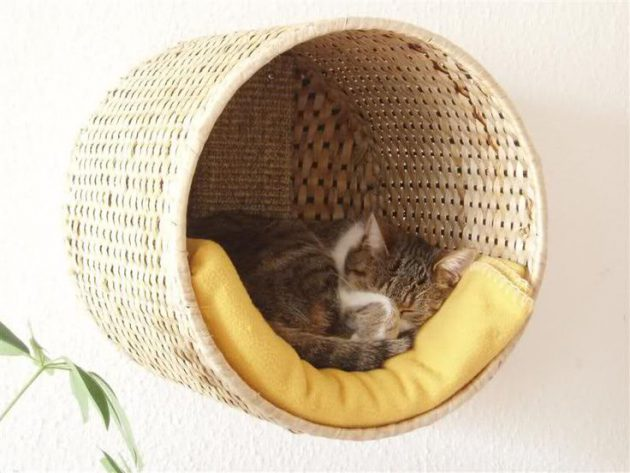 30-ideas-to-make-cool-cozy-bed-for-cat (3)