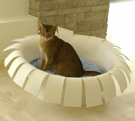 30-ideas-to-make-cool-cozy-bed-for-cat (5)