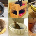 30 ไอเดียเฟอร์นิเจอร์สำหรับแมว DIY ของใช้และมุมโปรดของสัตว์เลี้ยงของคุณ
