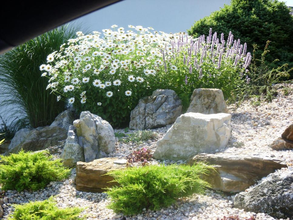 31 ideas for vegetable gardens and gardens (10)