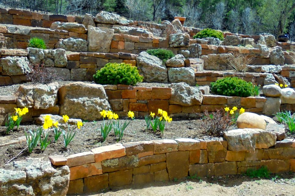 31 ideas for vegetable gardens and gardens (19)