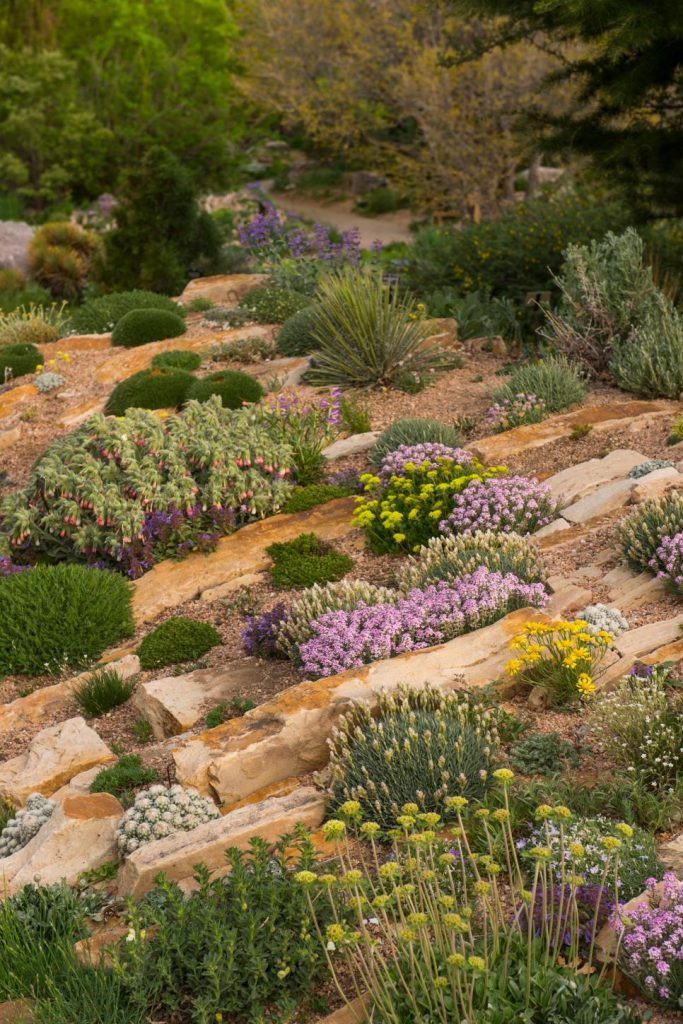 31 ideas for vegetable gardens and gardens (2)