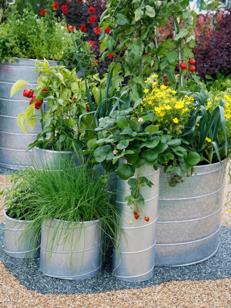 31 ideas for vegetable gardens and gardens (23)