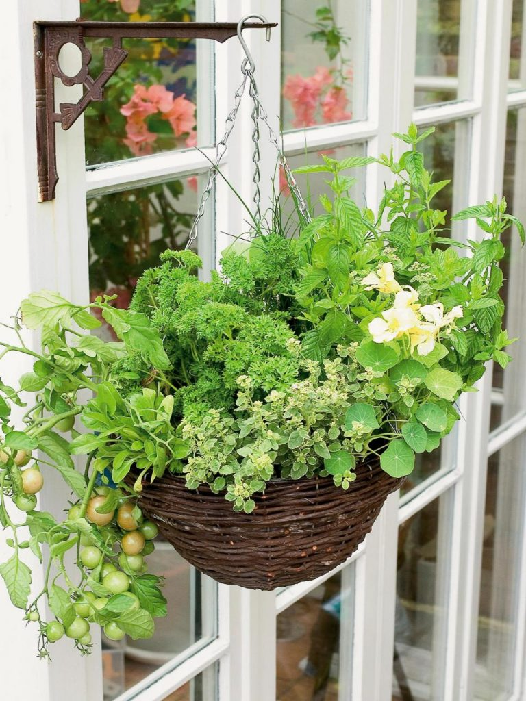 31 ideas for vegetable gardens and gardens (25)