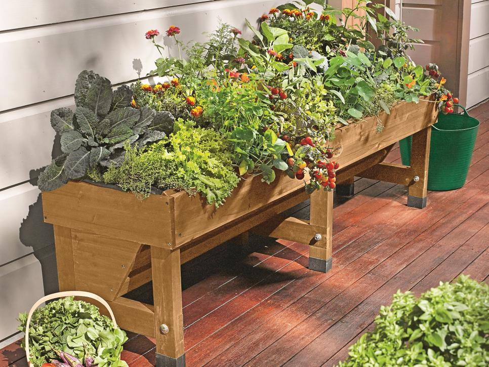 31 ideas for vegetable gardens and gardens (29)