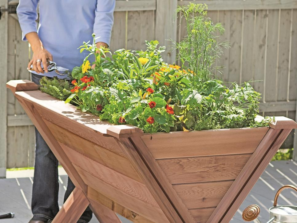 31 ideas for vegetable gardens and gardens (31)