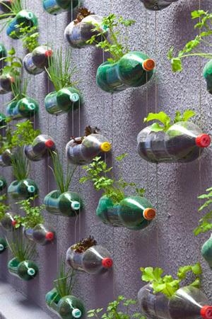 34 idealdiy vertical Vegetable garden (15)