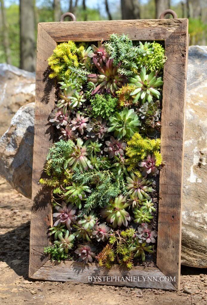 34 idealdiy vertical Vegetable garden (2)