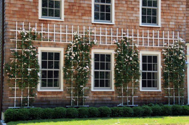 34 idealdiy vertical Vegetable garden (22)
