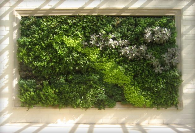 34 idealdiy vertical Vegetable garden (26)