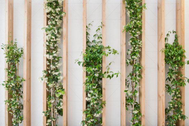 34 idealdiy vertical Vegetable garden (30)