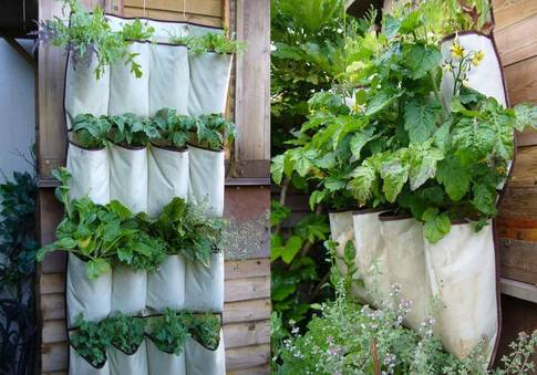 34 idealdiy vertical Vegetable garden (5)