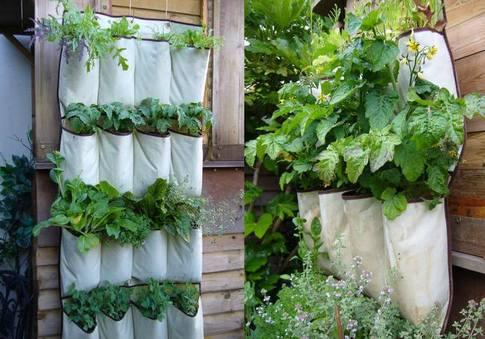 34 idealdiy vertical Vegetable garden (5)
