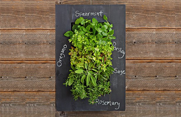 34 idealdiy vertical Vegetable garden (6)