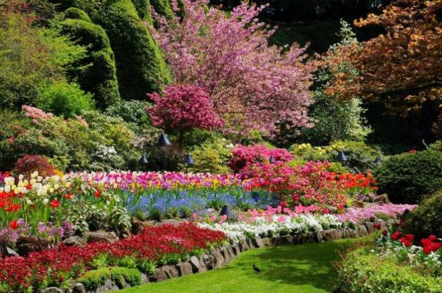 34-ideas-to-make-garden-paradise-in-your-yard (2)